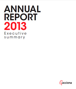 Annual Report 2013 Executive Summary