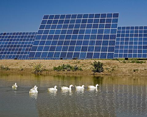 Amareleja Solar Park