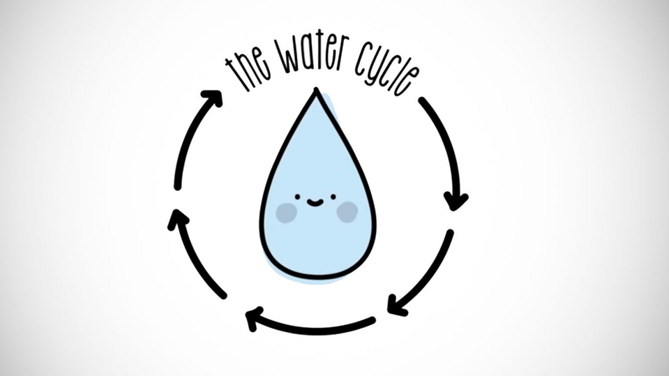 The water cycle | Sustainability